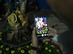 Tết Đinh Dậu 2017: Cây kiểng điêu khắc giá tiền triệu hút khách ở Sài Gòn