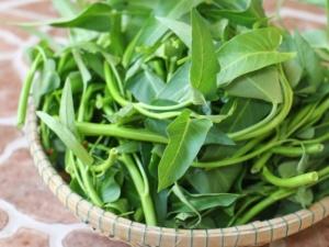 Sai lầm tai hại khi ăn rau muống mùa hè