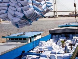 Đồng bằng sông Cửu Long: Doanh nghiệp giảm cạnh tranh vì thiếu cảng biển nước sâu