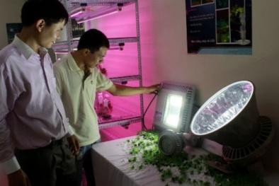 """Rào cản nào """"ngăn"""" công nghệ LED phát triển?"""