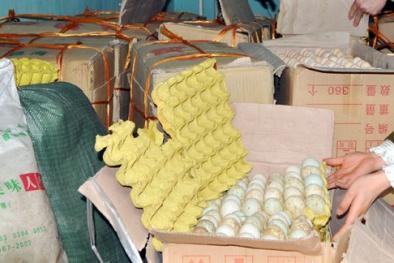 Thu giữ 1.400 quả trứng gia cầm không rõ nguồn gốc