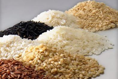 Ngược đời ăn gạo lứt chữa hiếm muộn và giảm cân