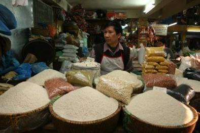 Thận trọng với hóa chất tạo hương cho gạo
