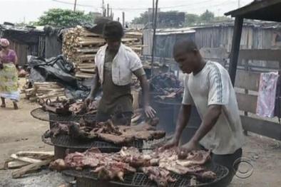 Thịt thú rừng có thể gây nhiễm dịch bệnh Ebola