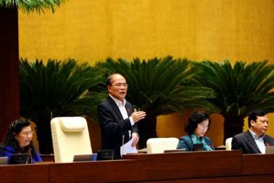 Chủ tịch Quốc hội Nguyễn Sinh Hùng nói về việc bỏ phiếu tín nhiệm