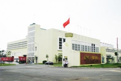 Doanh nghiệp Thừa Thiên - Huế hướng tới mô hình hoàn hảo GTCLQG