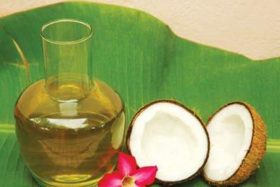 Kết quả hình ảnh cho hình ảnh dầu dừa