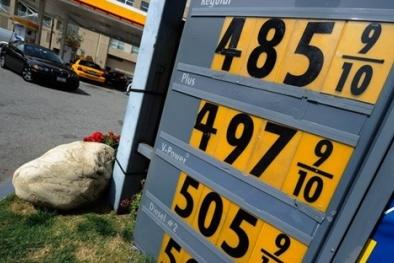 PVN phải dừng công trình dầu khí vì giá dầu giảm