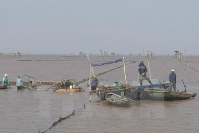 Bị đâm lật thuyền giữa sông, hai phụ nữ chết đuối