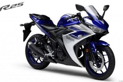 Yamaha R25 phiên bản mới có giá 'mềm' hơn đối thủ Kawasaki Ninja 250R
