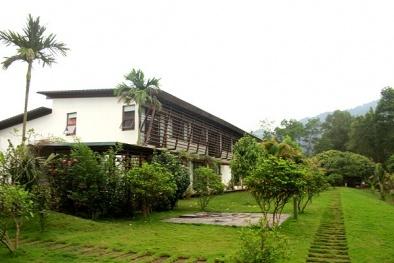 'Ngán' nhà lầu, biệt thự, sao Việt tìm về không gian xanh