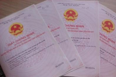 Tp.HCM: Trả đủ tiền nhưng sổ hồng chung cư vẫn chưa đến tay
