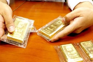 Giá vàng hôm nay 19/5/2015: Vàng và đô la cùng tăng