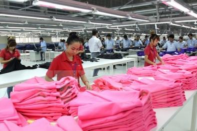 50% số doanh nghiệp FDI dự kiến sẽ mở rộng quy mô sản xuất