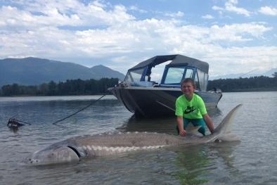 Dân câu 'ghen' với cậu bé 9 tuổi bắt được cá tầm trắng khổng lồ 270kg