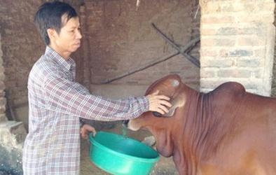 Vụ án oan Nguyễn Thanh Chấn: Được minh oan vẫn chưa yên thân