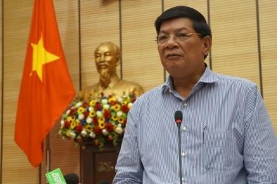 Xử lí vụ Hà Nội thay thế cây xanh: Hàng loạt cán bộ bị đề nghị giáng chức