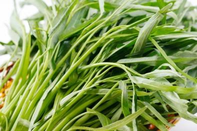 Lợi ích phòng trị bệnh hữu hiệu của rau muống trong mùa hè