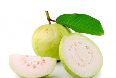 Những lợi ích vàng của trái ổi đối với sức khỏe