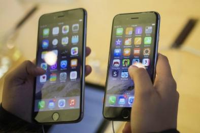 iPhone 6, 6 Plus chính hãng tiếp tục hạ giá cả triệu đồng