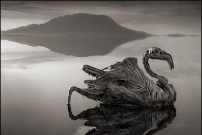 Bí ẩn 'Hồ tử thần' nơi tạo ra những xác ướp hoàn hảo