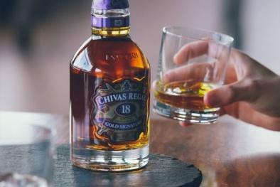 Image result for hình ảnh rượu