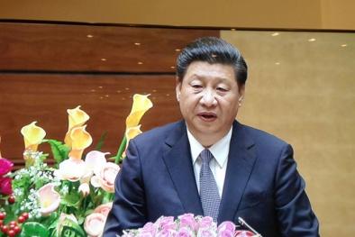 Ông Tập Cận Bình đã phát biểu gì trước Quốc hội Việt Nam?