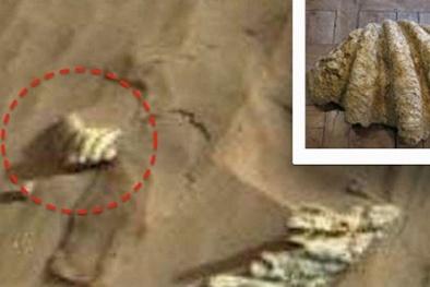 Lại xuất hiện vật thể lạ chứng minh sự sống trên sao Hỏa