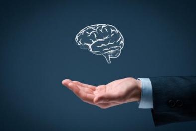 Doanh nghiệp Việt nâng cao nhận thức về bảo vệ tài sản trí tuệ