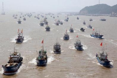 Hơn 3.720 tàu cá Trung Quốc vi phạm chủ quyền Biển Đông Việt Nam
