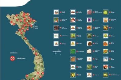 Giải pháp nâng cao hiệu quả bảo hộ chỉ dẫn địa lý ở Việt Nam