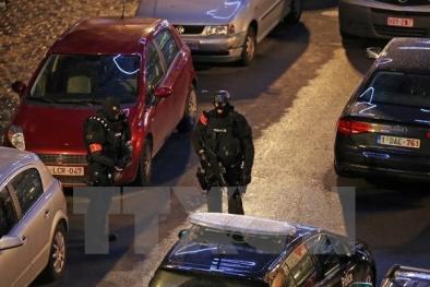 Bỉ sẽ hoàn toàn yên ắng trong đêm Giao Thừa 2016 vì mối lo khủng bố