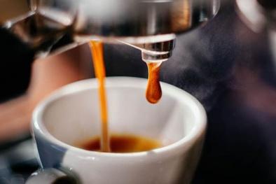 Vi khuẩn gây nhiễm trùng đường tiết niệu 'trú ẩn' trong máy pha cà phê
