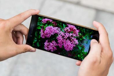 Vui Tết với những smartphone sở hữu màn hình đẹp 'hút hồn'