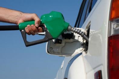 Ô tô đổ xăng A95 Petrolimex đi không nổi?