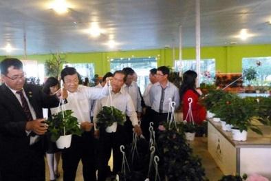 20% doanh nghiệp chủ lực Lâm Đồng thực hiện dự án nâng cao NSCL