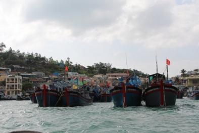 Tìm kiếm 5 ngư dân lênh đênh ngoài khơi Hoàng Sa vì tàu cá bị đâm chìm