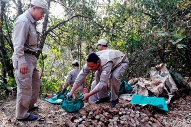 Quảng Trị: Cả nghìn quả đạn pháo ẩn hiện chờ nổ trong bãi rác