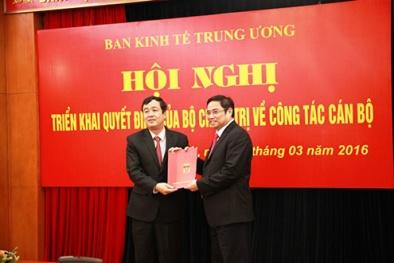 Phó Chủ tịch UBND tỉnh Bình Định làm Phó trưởng Ban Kinh tế Trung ương