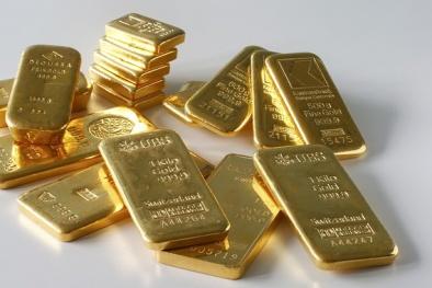 Giá vàng hôm nay 24/3/2016 lập đáy gần 1 tháng, đô la vọt tăng