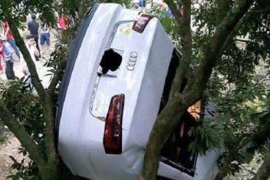 Tai nạn hy hữu: Xe Audi A6 chổng ngược trong một hộ dân nuôi ong mật