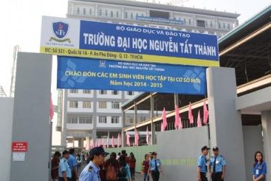 Một giảng viên Đại học Nguyễn Tất Thành bị buộc thôi việc vì 8 năm dùng bằng giả