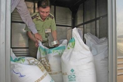 Bắt quả tang 30 tấn đường nhập lậu sắp được đưa ra thị trường tiêu thụ