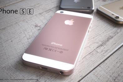 SE là mẫu iPhone nhanh và mạnh nhất trong 10 năm qua