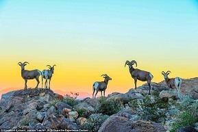 Chiêm ngưỡng vẻ đẹp mê hồn của Công viên Quốc gia Mỹ