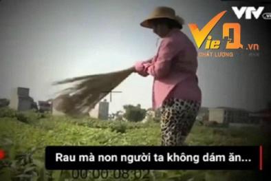Dàn dựng phóng sự: Phóng viên VTV xin lỗi, dân đòi bồi thường vì bị thiệt hại