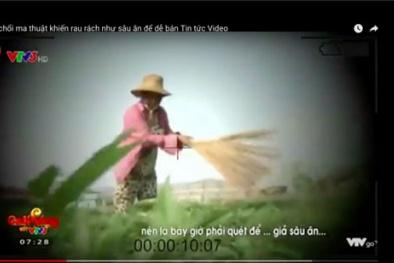 Xử phạt VTV 50 triệu đồng về phóng sự 'Cây chổi quét rau'