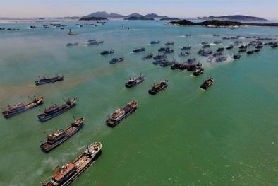 Trung Quốc đơn phương thi hành lệnh cấm đánh bắt cá trái phép trên Biển Đông
