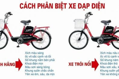 Cách phân biệt xe đạp điện thật và xe đạp điện giả?
