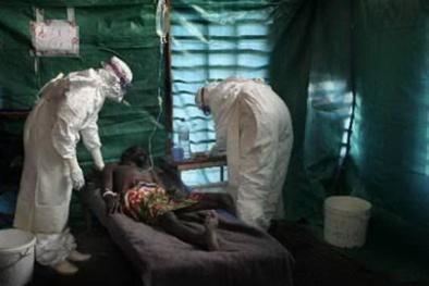Bộ Y tế cảnh báo bệnh sốt vàng từ Angola có thể xâm nhập vào Việt Nam